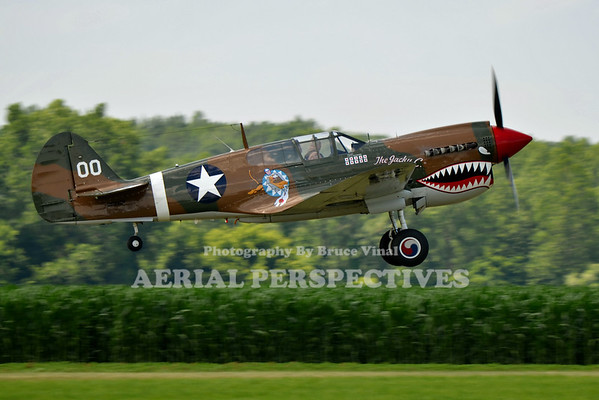 "Curtiss Wright P-40N ""The Jacky C"""