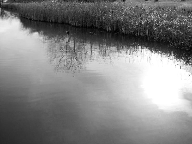 amh PARKS & WATER (207).jpg