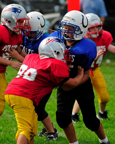 2008 WHYFL Season - Mighty Mites