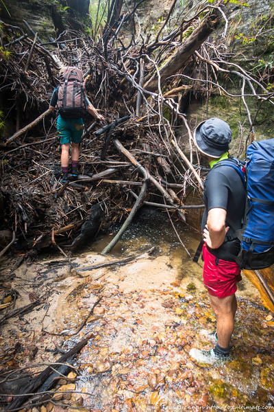 It's not all fun and games - the bushfires and flood have left numerous logjams to deal with