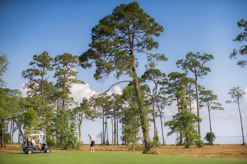 golf in gulf shores