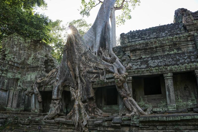 Cambodia-2018-8679.jpg