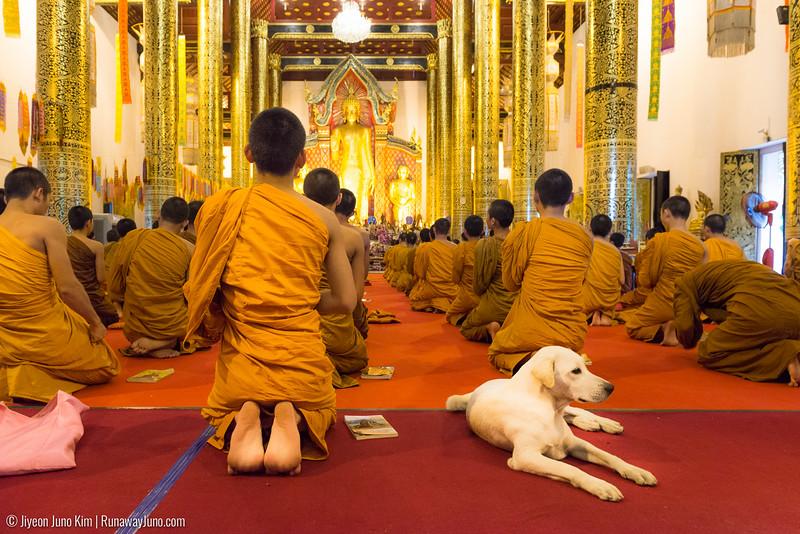 2016.08_Thailand-6109853.jpg
