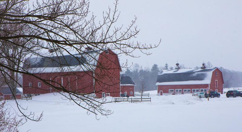 barns, snow-7485.jpg