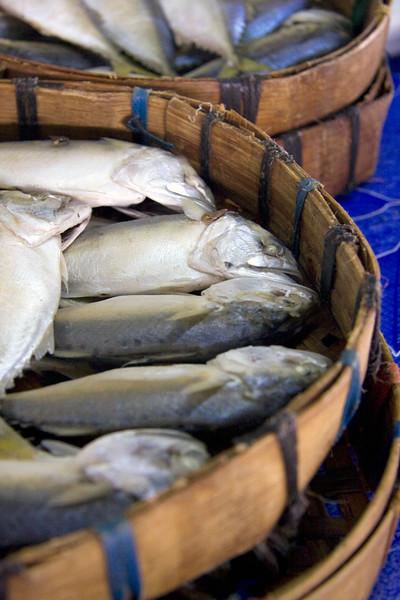 fresh-fish_3193445414_o.jpg