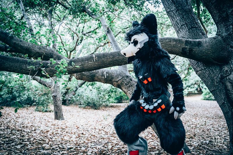 Reaper FurBBQ (6 of 78).jpg