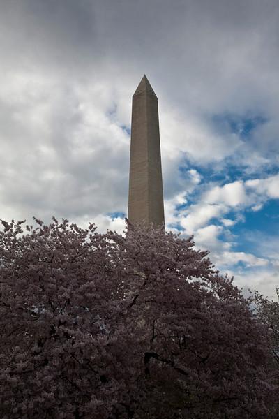 2009-04-03-Washington-DC-0303.jpg