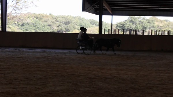 2016 October 30th NTW ~ North Texas Whip ~ Videos