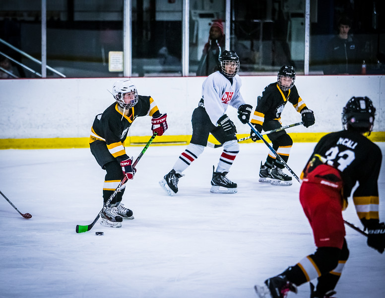 Bruins2-342.jpg