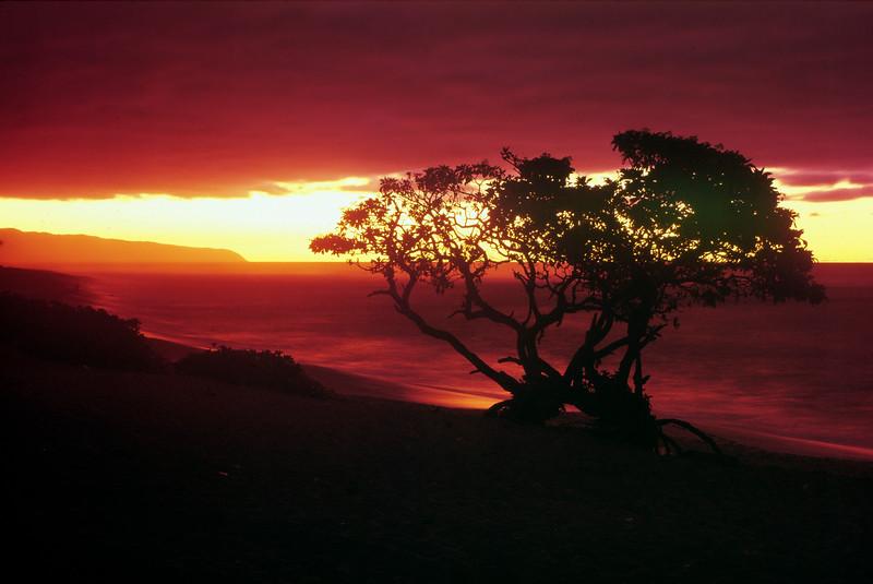 Hawaii Sunset North Shore.jpg