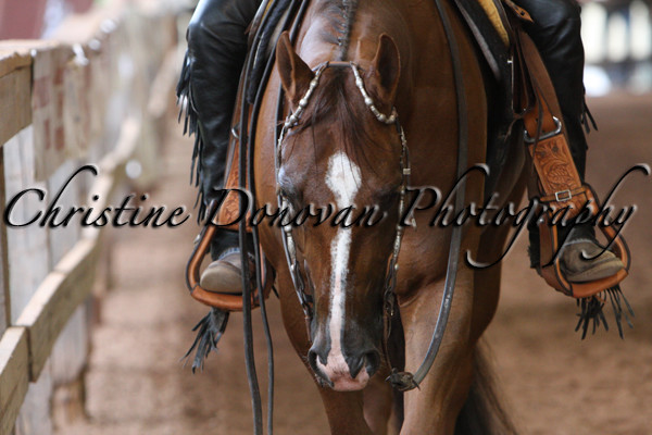 Junior Western Pleasure