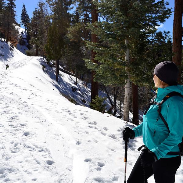 4_bigbear_snowshoeing_run1.jpg
