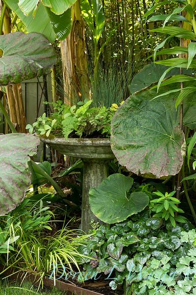 Lisa Bauer - designer's garden_1300.jpg