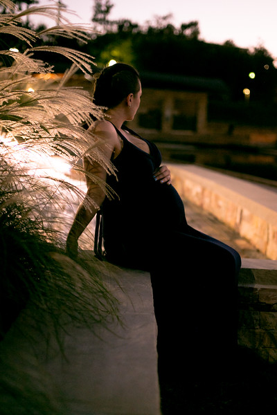 Paone Photography - Alex and Renee Maternity-9149.jpg