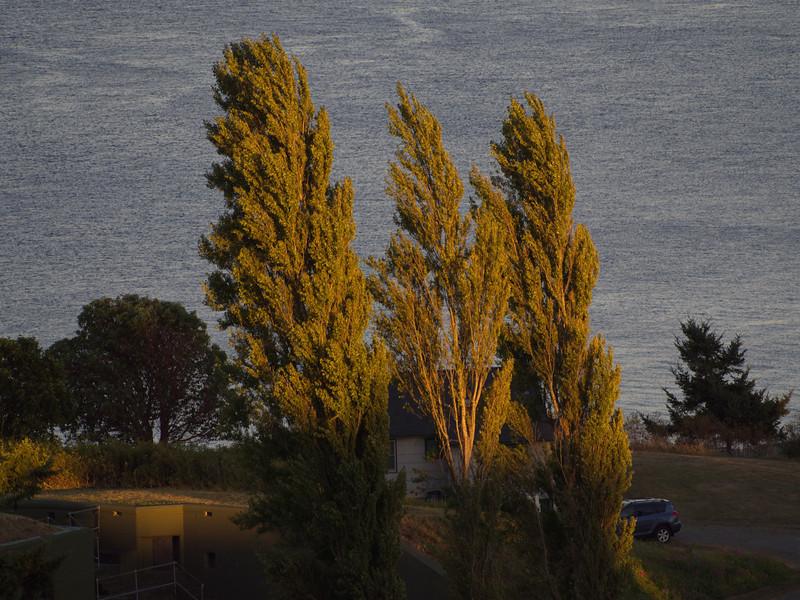 Fort Worden - August 2013 - 014.JPG