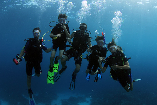 Best Kids Diving/Family Diving photos