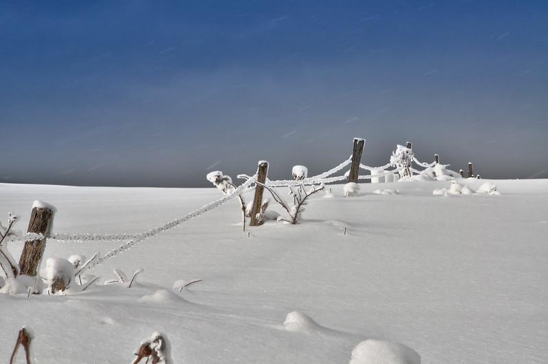 Winter scenes-10.jpg