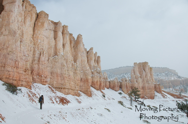 Bryce Canyon National Park - Fairyland Loop Trail - in among the hoodoos