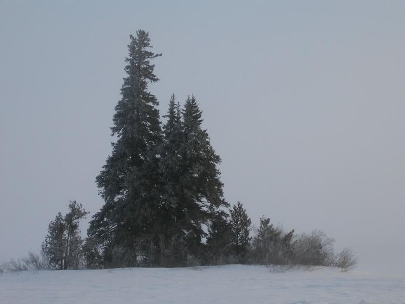 IMG_2732_sunrise_neskantaga_winter_road_resize.JPG