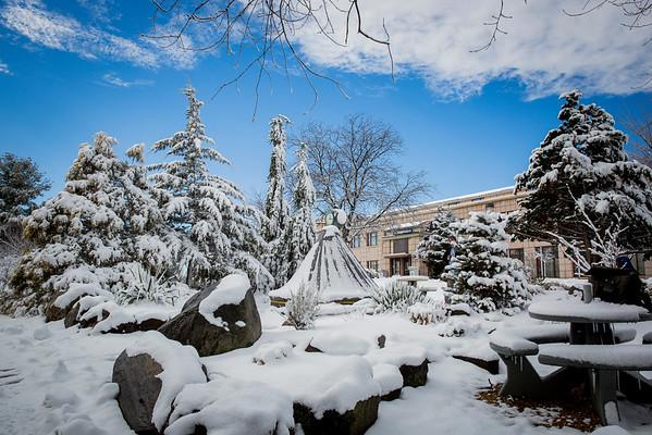 Snow Day 2_5_16