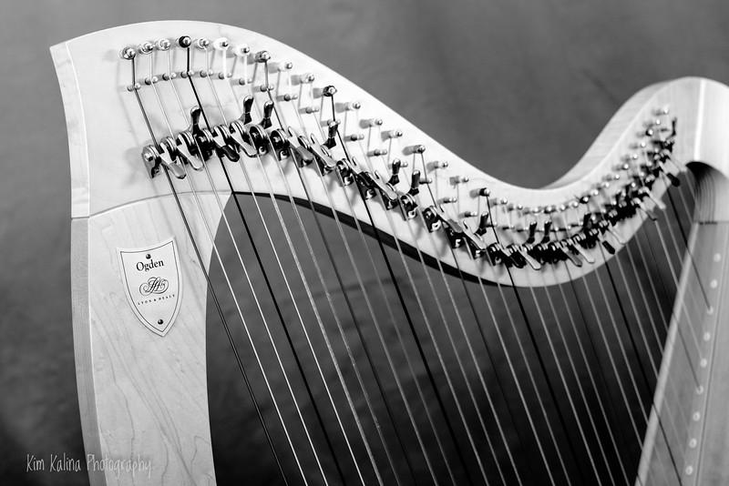 Harp light.jpg