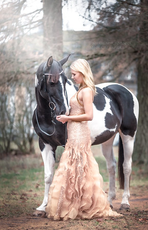 Naisia ja hevosia
