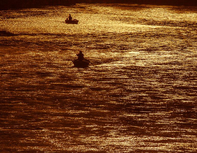 Sandy_River_1-28-10_5d_014.jpg
