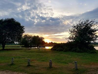 RR10 19/7/2017 Janesmoor Pond