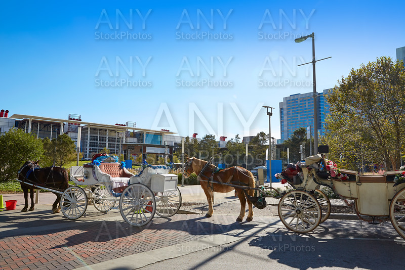 Houston Discovery green park horse carriages