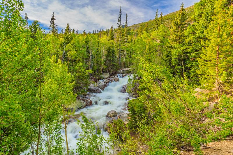 The Creek That Runs Through It