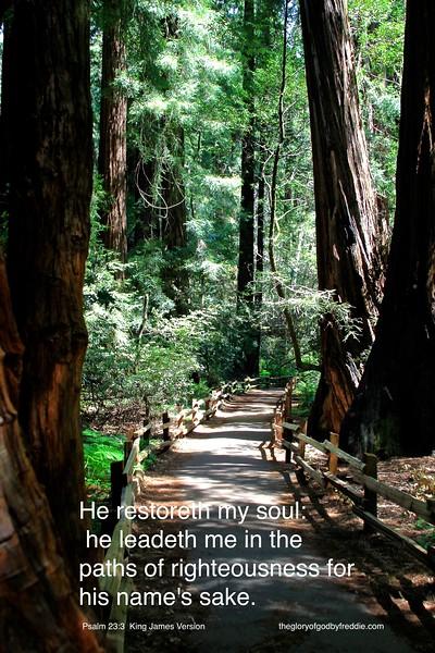 Psalm 23-3 j .jpg