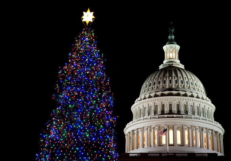 . The U.S. Capitol Christmas tree is seen after being lit by House Speaker John Boehner and Ryan Shuster, 17, of Colorado Spring, Colo., not pictured, on the Capitol grounds in Washington, Tuesday, Dec. 4, 2012. The 2012 U.S. Capitol Christmas Tree is an Engelmann spruce from Coloradoís White River National Forest.   (AP Photo/Manuel Balce Ceneta)