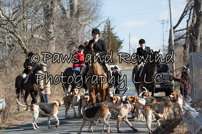 March 1, 2020 Amwell Valley Hounds @ 39 Kuhl Road