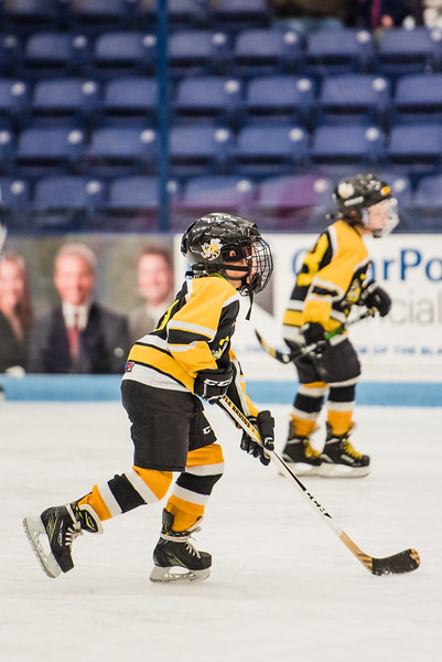 CMYHA 2019 Mites Orono Tournament