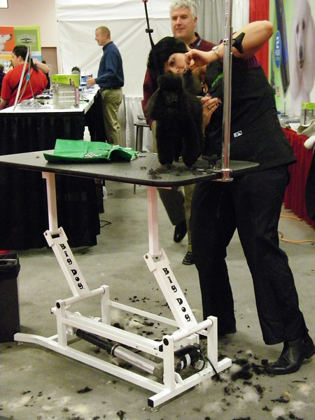 Action in the Andis Booth at Intergroom 2013 - Ultra Lift Big Dog Electric Grooming Table.jpg