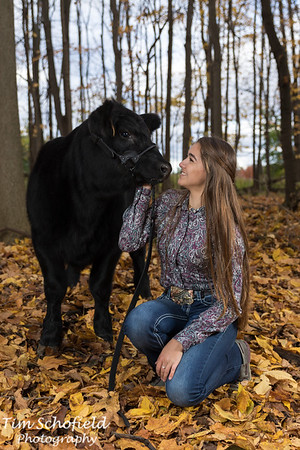 Taylor & Cole Fall 2020 Cows