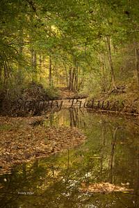 Banita Creek104