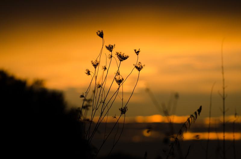 Sonnenuntergang-18.jpg