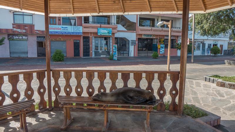 Taking a Break on San Cristobal.jpg