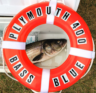Bass & Blue Tournament Weigh-in  7/10/16