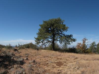 Pine Mtn - Oct. 18, 2009