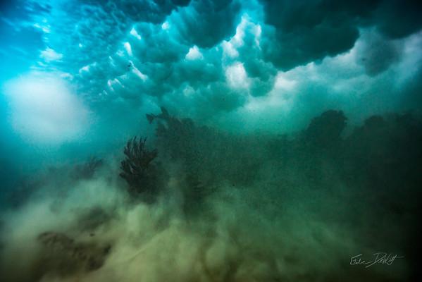 3-13 Snorkeling Playa del Carmen