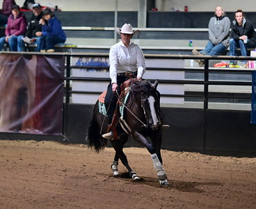 limited open and  intermediate futurity