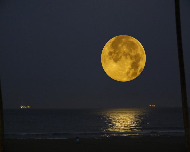 A Summer Full Moon.jpg