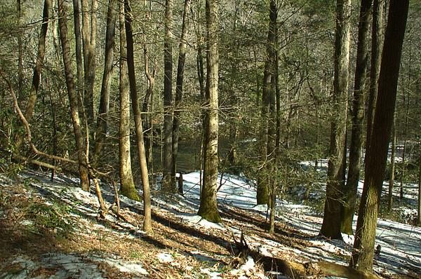 Chattooga River Trail 1/30/16