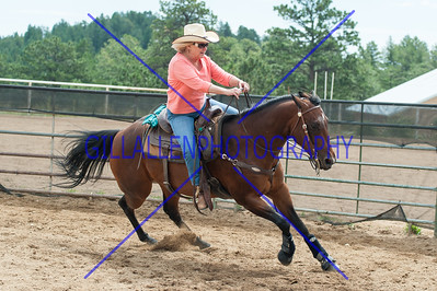 RanchSorting July 26th 2014 extra