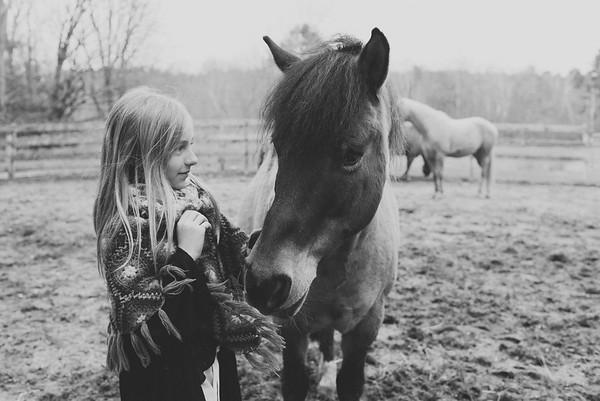 4.29.18 Winterberry Horse Farm