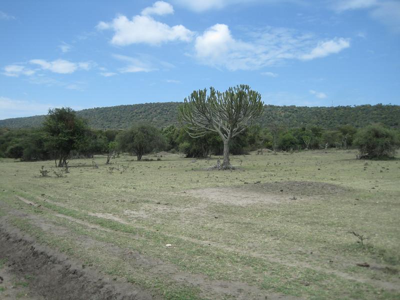 Tanzania14-4123.jpg