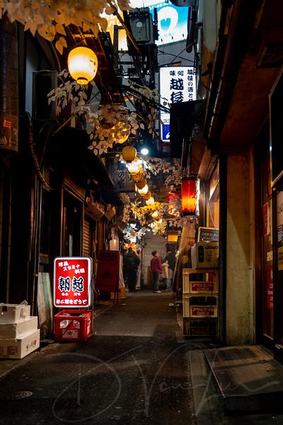 JapanPhotoTour20190205-3.jpg