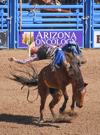 Tucson Rodeo 2016
